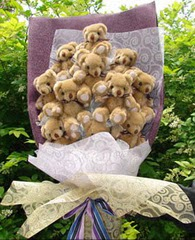 15 adet pelus ayi buketi Dikmen İlker internetten çiçek siparişi