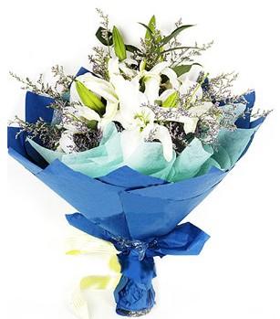 ankara çiçek yolla Dikmen malazgirt çiçekçi telefonları  4 adet dal kazablankadan görsel buket