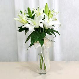 ankara çiçek yolla Dikmen malazgirt çiçekçi telefonları  2 dal kazablanka ile yapılmış vazo çiçeği
