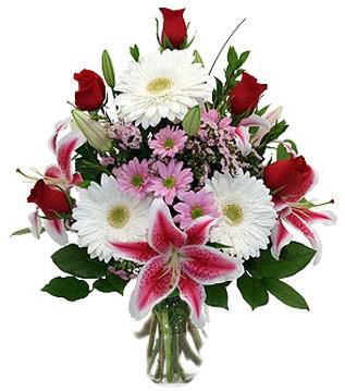 Ankara Dikmen Mürseluluç hediye çiçek yolla  1 dal kazablanka 5 gül ve kırçiçeği vazosu