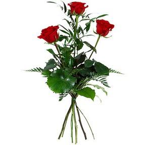 Ankara Dikmen çiçek yolla  3 adet kırmızı gülden buket
