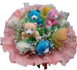 Ankara çiçek satışı Dikmen online çiçekçi , çiçek siparişi  11 adet ayıcıktan ayı buketi