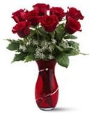 8 adet kırmızı gül sevgilime hediye Dikmen Keklikpınarı çiçek siparişi vermek