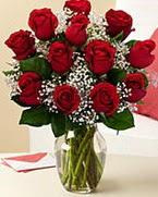 Sevgilime hediye 9 adet 1.ci kalite gül ankara çiçek yolla Dikmen malazgirt çiçekçi telefonları