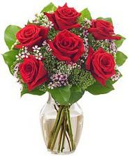 Kız arkadaşıma hediye 6 kırmızı gül Aşağı Dikmen ankara çiçekçi telefonları yurtiçi ve yurtdışı çiçek siparişi