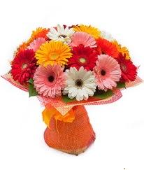 Renkli gerbera buketi ankara çiçek yolla Dikmen malazgirt çiçekçi telefonları