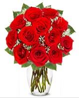 12 adet vazoda kıpkırmızı gül Dikmen Harbiye ankara İnternetten çiçek siparişi
