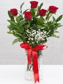 cam vazo içerisinde 5 adet kırmızı gül Dikmen İlkadım çiçek gönderme sitemiz güvenlidir