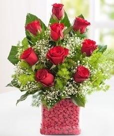 Cam içerisinde 9 adet kırmızı gül Ankara Dikmen kaliteli taze ve ucuz çiçekler