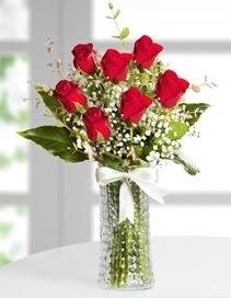 Cam vazoda 7 adet kırmızı gül Öveçler Dikmen anneler günü çiçek yolla
