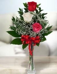 Camda 2 kırmızı 1 beyaz gül Dikmen Akpınar Ankara  hediye sevgilime hediye çiçek