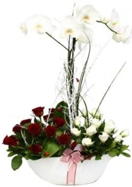 Tek dal beyaz orkide 8 beyaz 8 kırmızı gül Ankara Dikmen 14 şubat sevgililer günü çiçek