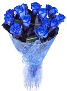 12 adet mavi gül buketi ankara çiçekçi Dikmen ucuz çiçek gönder