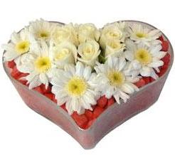Kalp içerisinde 7 beyaz gül ve papatyalar Ankara Dikmen kaliteli taze ve ucuz çiçekler