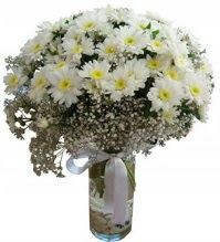 Vazoda beyaz papatyalar Dikmen sokullu ankara internetten çiçek satışı