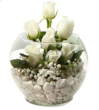 11 adet beyaz gül cam fanus çiçeği Ankara Dikmen Mürseluluç hediye çiçek yolla