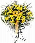 Dikmen sokullu ankara internetten çiçek satışı  Sari kazablanka Ferforje