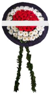 mozele çiçeği çiçekçi ankara Dikmen çiçek satışı