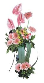 Ankara Dikmen çiçek siparişi sitesi  Pembe Antoryum Harikalar Rüyasi