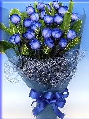 19 adet eşsiz mavi gül buketi Ankara Dikmen çiçek yolla