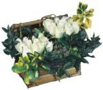 Ankara Dikmen İlker çiçek yolla , çiçek gönder , çiçekçi   Ahsap sandik beyaz güller