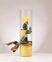 ankara çiçek yolla Dikmen malazgirt çiçekçi telefonları  2 adet çok masum sari gül