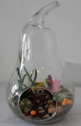 Orta boy cam armut terrarium Ankara Dikmen 14 şubat sevgililer günü çiçek
