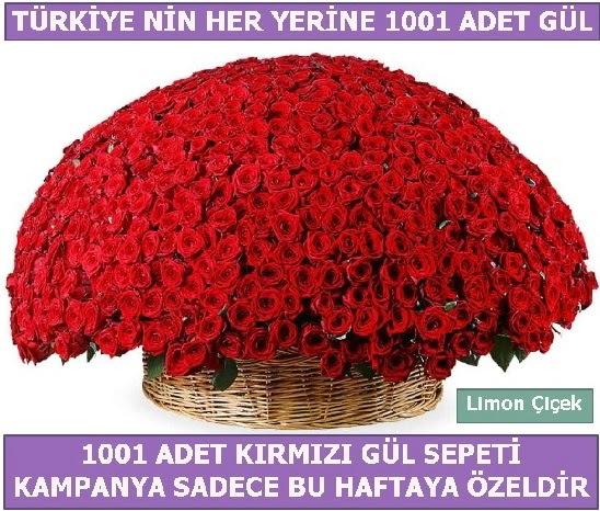 1001 Adet kırmızı gül Bu haftaya özel Dikmen Keklikpınarı çiçek siparişi vermek