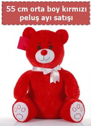 55 cm kırmızı orta boy oturan peluş ayı Dikmen cicek , cicekci