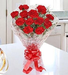 12 adet kırmızı karanfil buketi Dikmen Keklikpınarı çiçek siparişi vermek
