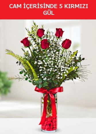 Cam içerisinde 5 adet kırmızı gül Dikmen ankara çiçek mağazası , çiçekçi adresleri