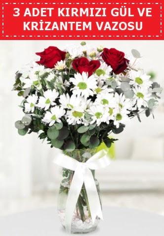 3 kırmızı gül ve camda krizantem çiçekleri Ankara Dikmen cicekciler , cicek siparisi