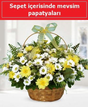 Sepet içerisinde mevsim papatyaları Dikmen Akpınar Ankara  hediye sevgilime hediye çiçek
