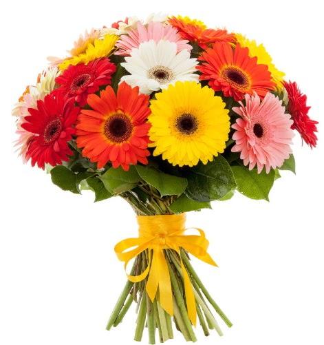 Gerbera demeti buketi Ankara Dikmen 14 şubat sevgililer günü çiçek