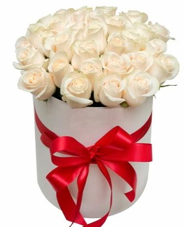 Kutuda özel 27 beyaz gül aranjmanı Dikmen İlkadım çiçek gönderme sitemiz güvenlidir