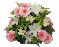 Dikmen Naciçakır çiçekçi mağazası  Gül kazablanka gerbera sepet çiçek modeli