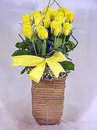 Dikmen sokullu ankara internetten çiçek satışı  sicak ates çiçek sepet modeli